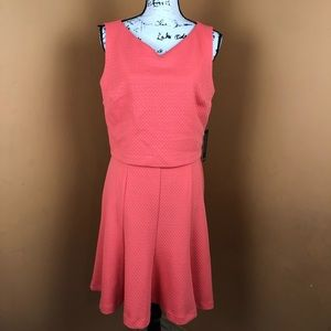 NWT The Limited Fit and Flare Dress size 8